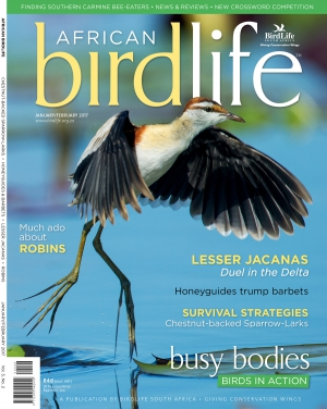 African Birdlife Jan / Dec 2017