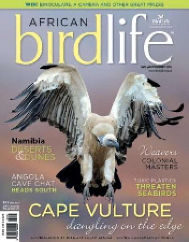 African Birdlife Jan / Feb 2013
