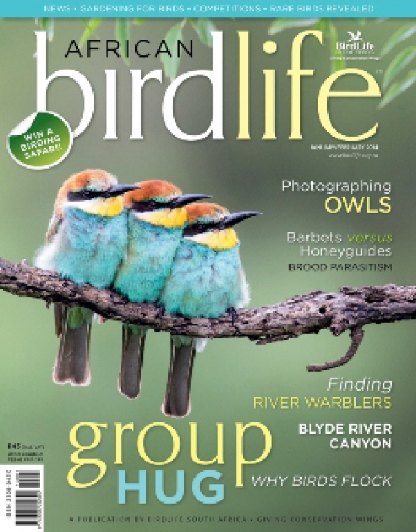 African Birdlife Jan / Feb 2014