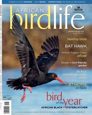 African Birdlife Jan / Feb 2018