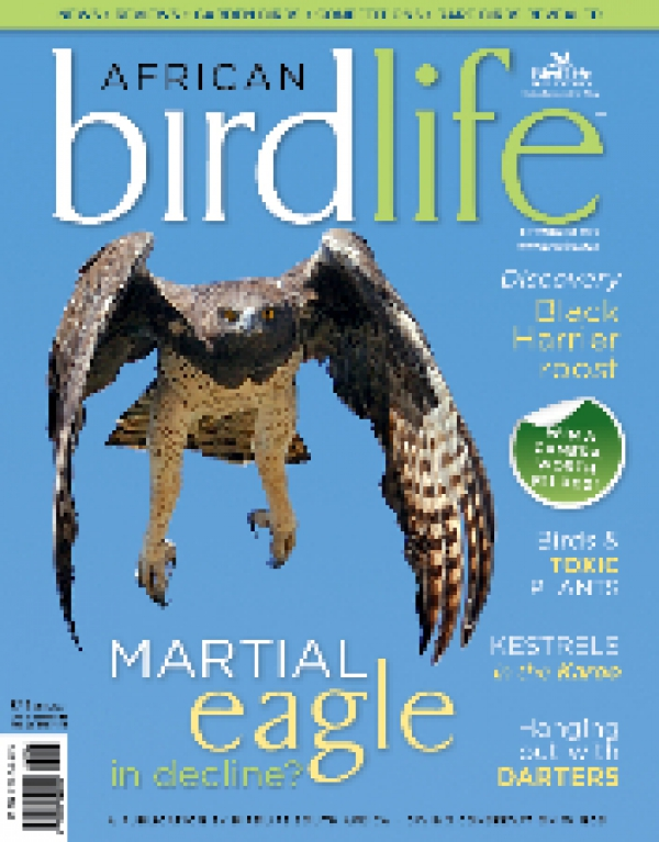 African Birdlife Jul /Aug 2013