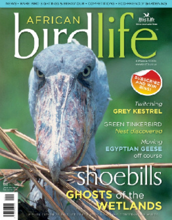 African Birdlife Jul / Aug 2014