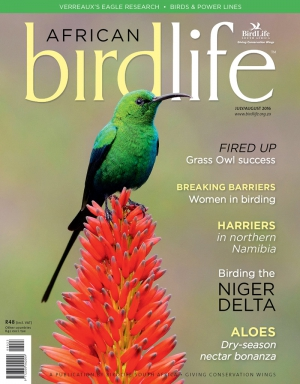 African Birdlife Jul / Aug 2016