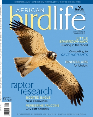 African Birdlife Jul / Aug 2017