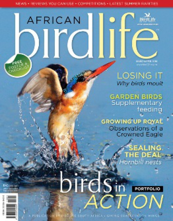 African Birdlife Mar / Apr 2014