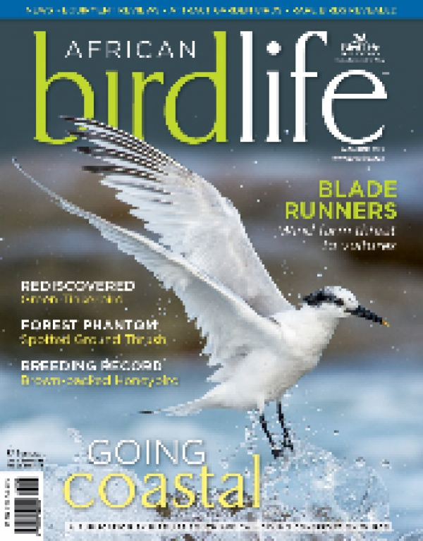 African Birdlife May / Jun 2013