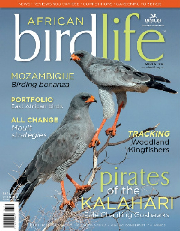 African Birdlife May / Jun 2014