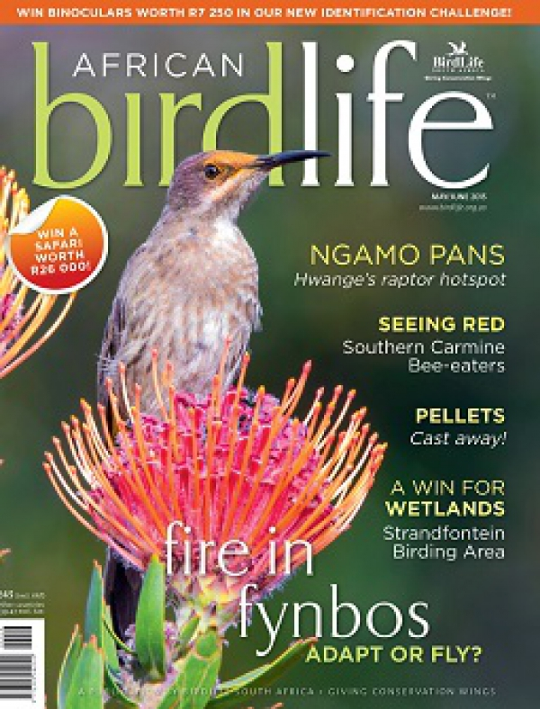 African Birdlife May / Jun 2015