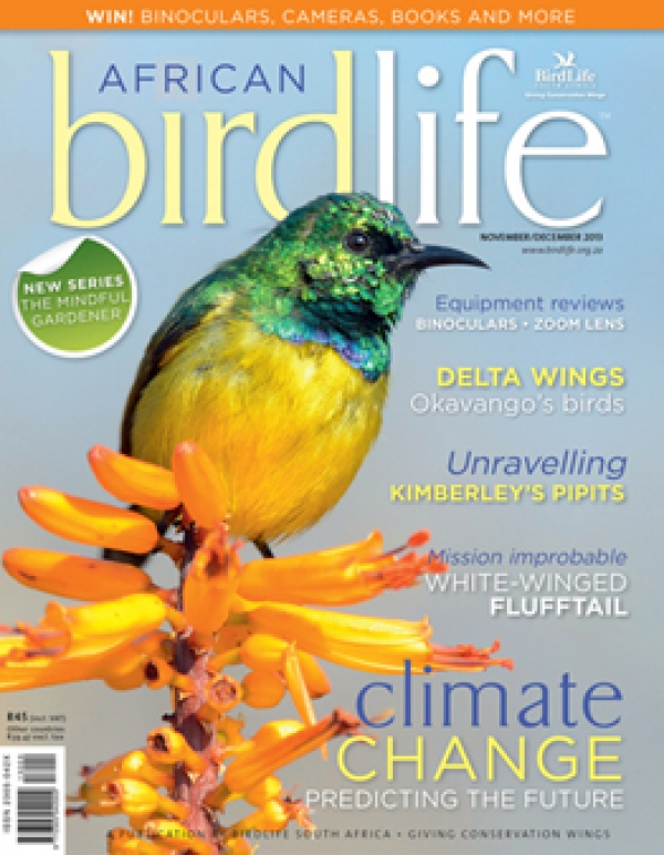 African Birdlife Nov / Dec 2013