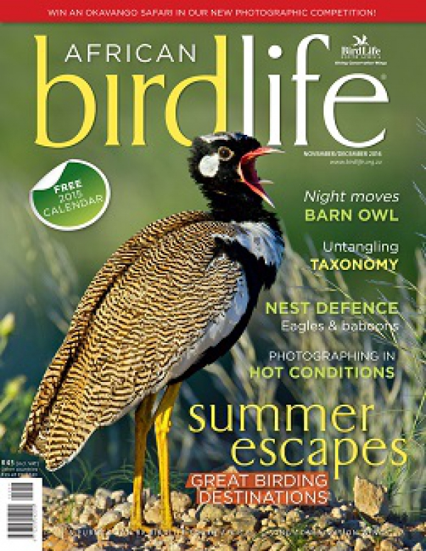 African Birdlife Nov / Dec 2014
