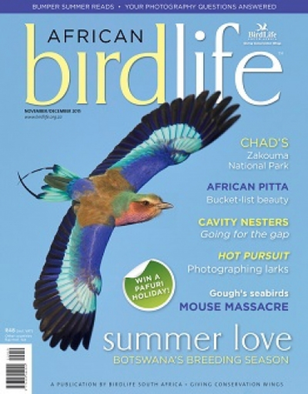 African Birdlife Nov / Dec 2015