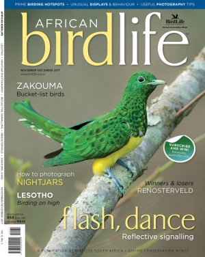 African Birdlife Nov / Dec 2017