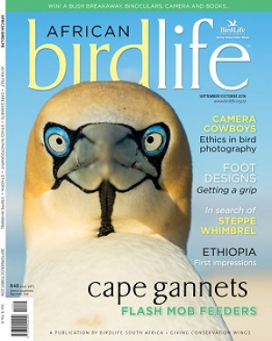 African Birdlife Sep / Oct 2016