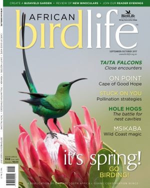 African Birdlife Sep / Oct 2017