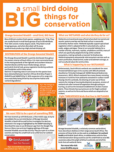 Media and Resources - BirdLife South Africa