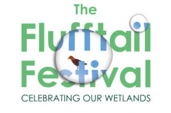Flufftail Festival_Logo_Final-01-1