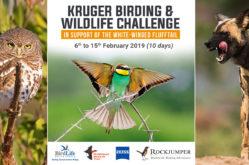 Kruger_Bird_Challenge - banner image