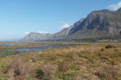Photo1_Klein River estuary