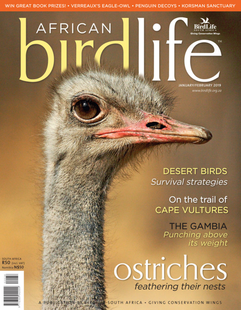 African Birdlife Jan / Feb 2019