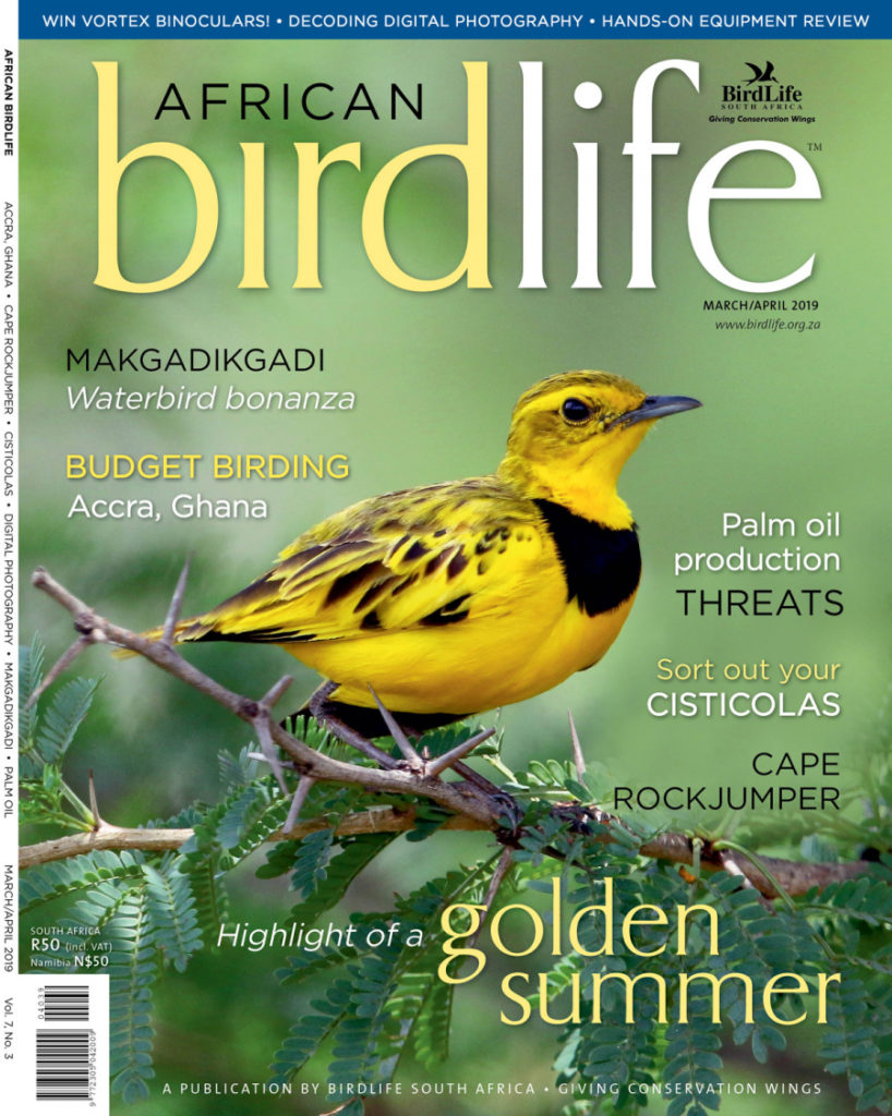 African Birdlife Mar / Apr 2019