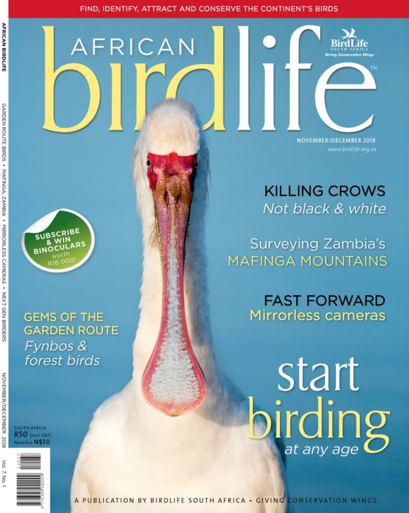 African Birdlife Nov / Dec 2018