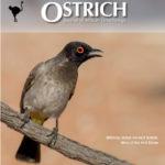 ostrich cover