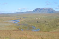 Nelsonskop, one of the prominent features of the Wilge Stewardship area, as seen from Ingula Nature Reserve.
