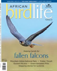 Join a Bird Club - BirdLife South Africa