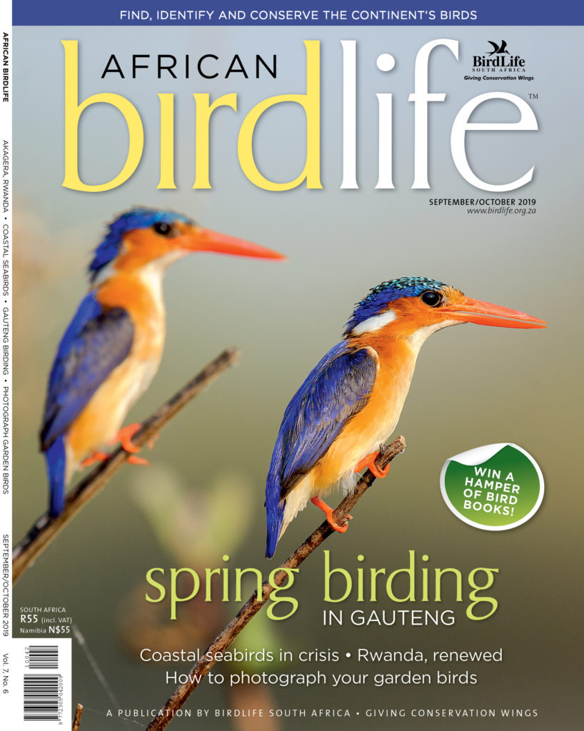 African Birdlife Sep / Oct 2019
