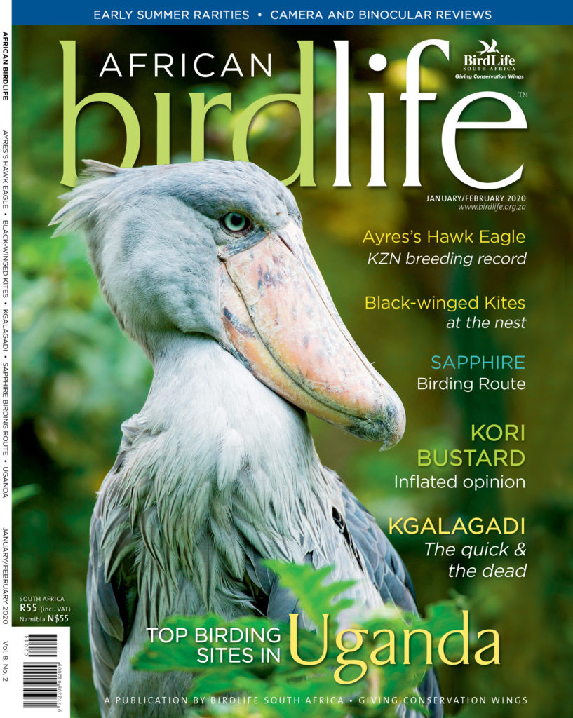 African Birdlife Jan / Feb 2020