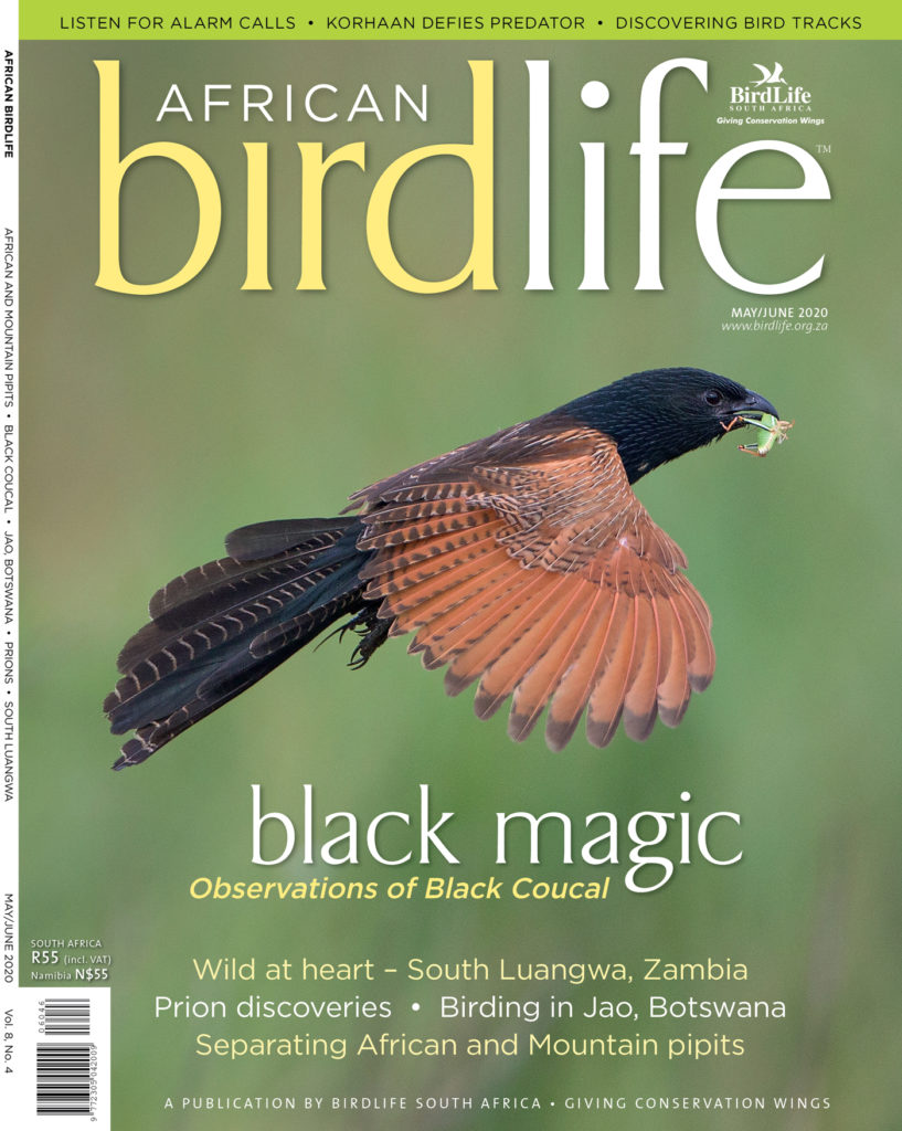 African Birdlife May / June 2020