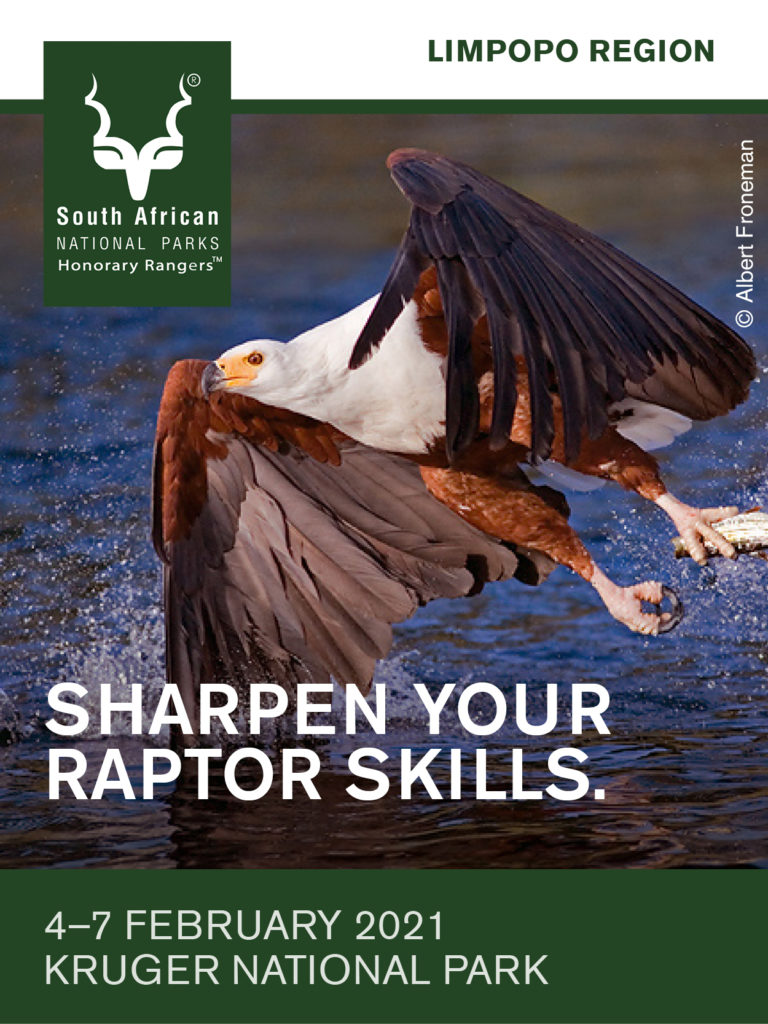 Not RSPB Birdlife Pin Badge South Africa Verreaux's Eagle