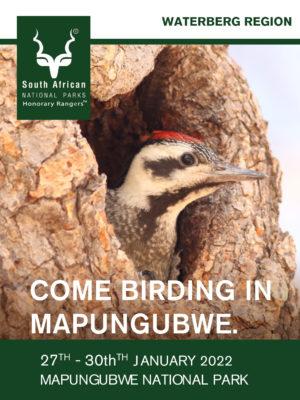 721881 SHR_Waterberg Region Mapungubwe_E-Banner2