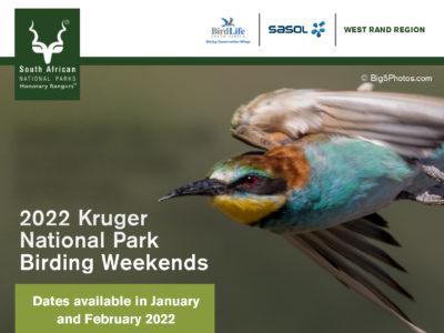722254 SANParks_2022 Kruger Birding Weekends E- Banner2